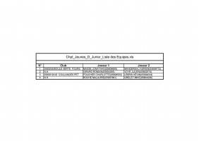 Chpt_Jeunes_D_Junior_Liste des Equipes-page-001